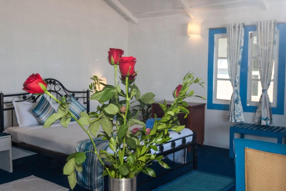 쿠바 아곤다(Cuba Agonda) Hotel Image 5 - Guestroom
