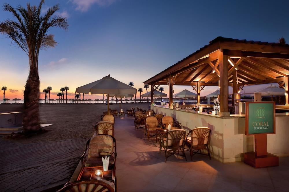 힐튼 마르사 알람 누비안 리조트(Hilton Marsa Alam Nubian Resort) Hotel Image 94 - Hotel Bar