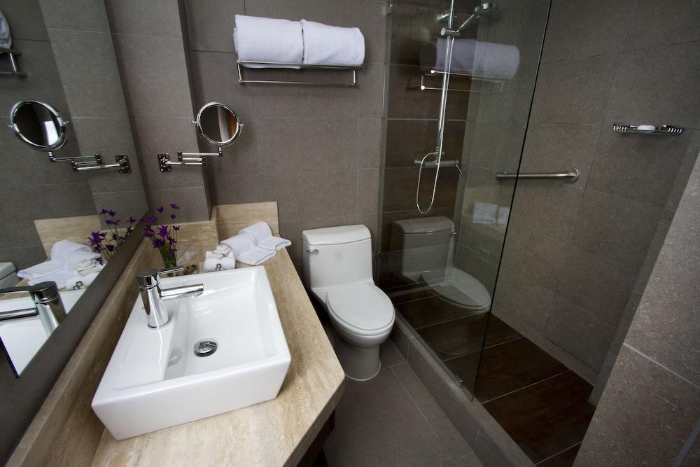 라스타리아 부티크 호텔(Lastarria Boutique Hotel) Hotel Image 17 - Guestroom