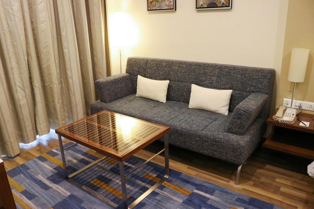 래디슨 블루 호텔 그레이터 노이다(Radisson Blu Hotel Greater Noida) Hotel Image 31 - Living Area