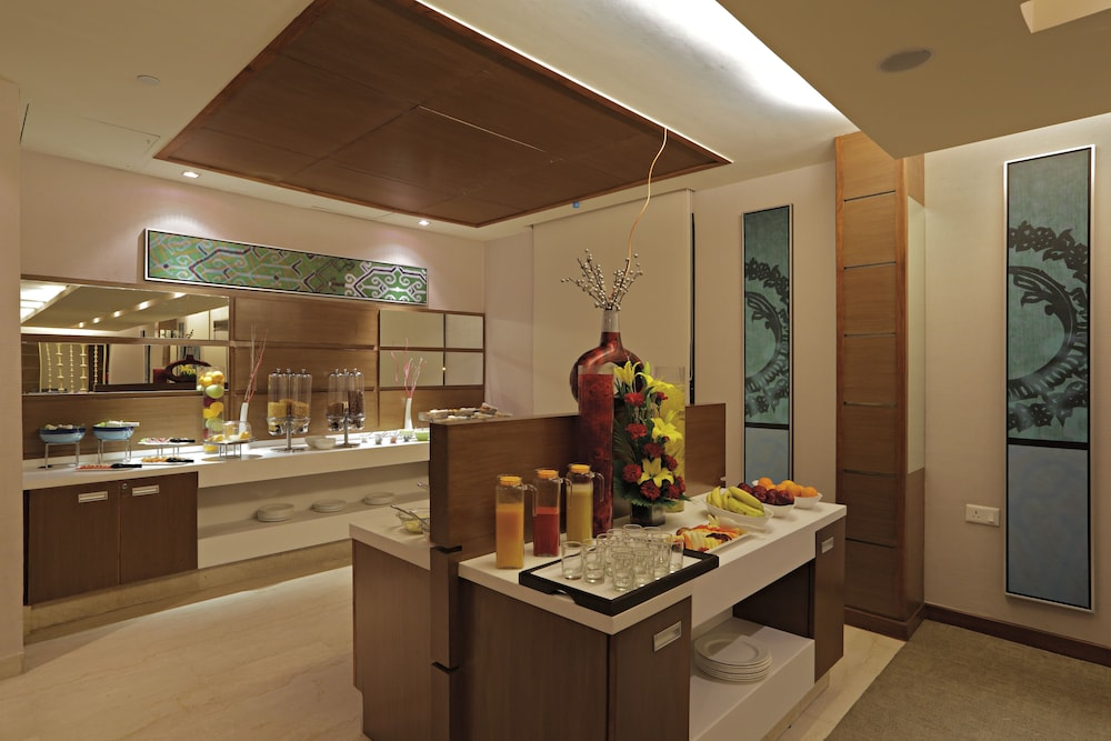 래디슨 블루 호텔 그레이터 노이다(Radisson Blu Hotel Greater Noida) Hotel Image 125 - Executive Lounge