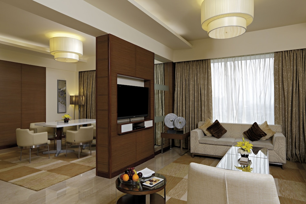 래디슨 블루 호텔 그레이터 노이다(Radisson Blu Hotel Greater Noida) Hotel Image 29 - Living Area