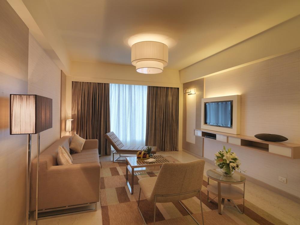 래디슨 블루 호텔 그레이터 노이다(Radisson Blu Hotel Greater Noida) Hotel Image 34 - Living Room
