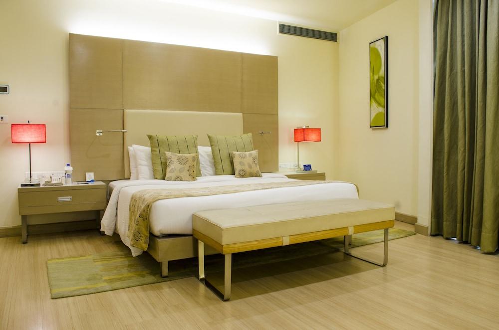 래디슨 블루 호텔 그레이터 노이다(Radisson Blu Hotel Greater Noida) Hotel Image 25 - Guestroom