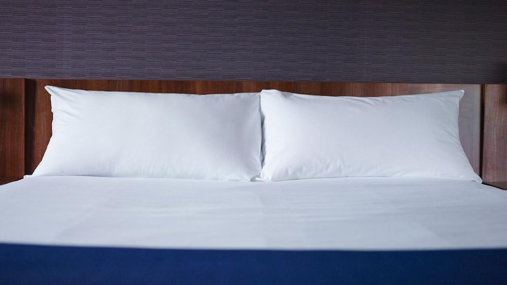 홀리데이 인 익스프레스 스타스부르크-수드(Holiday Inn Express Strasbourg - Sud) Hotel Image 12 - Guestroom
