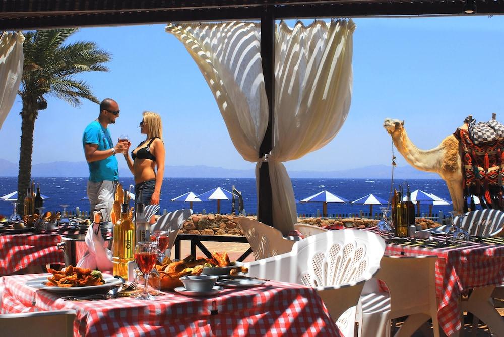 트로피텔 다하브 오아시스 리조트(Tropitel Dahab Oasis Resort) Hotel Image 14 - Restaurant