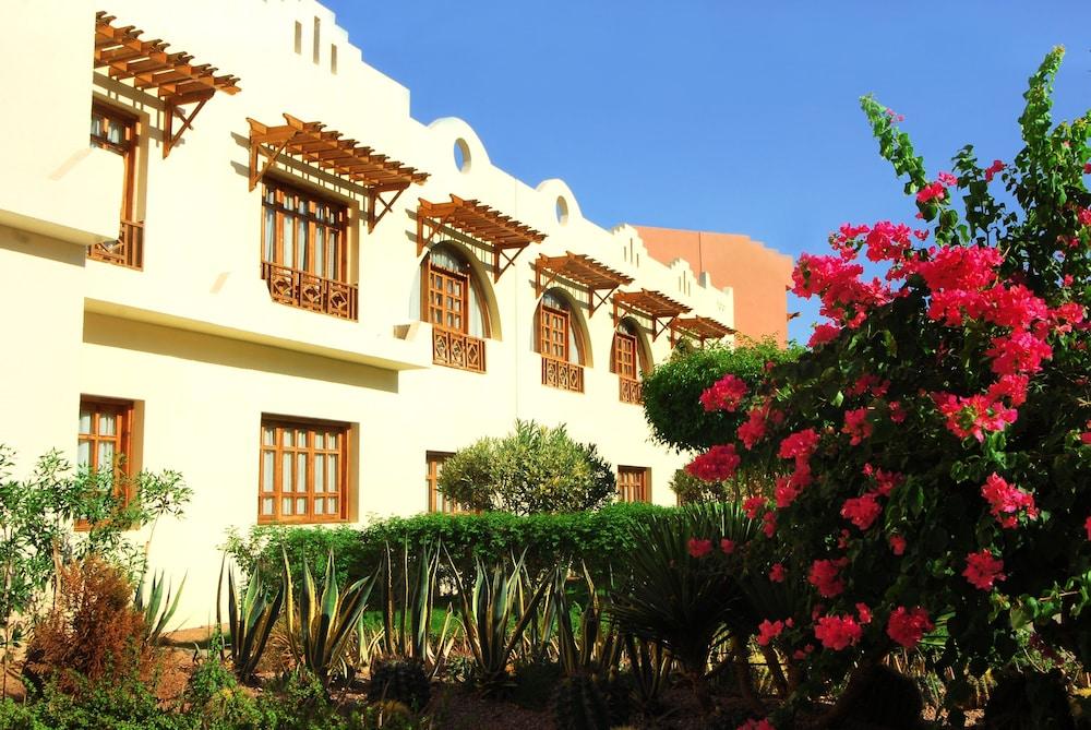 트로피텔 다하브 오아시스 리조트(Tropitel Dahab Oasis Resort) Hotel Image 6 - Guestroom View