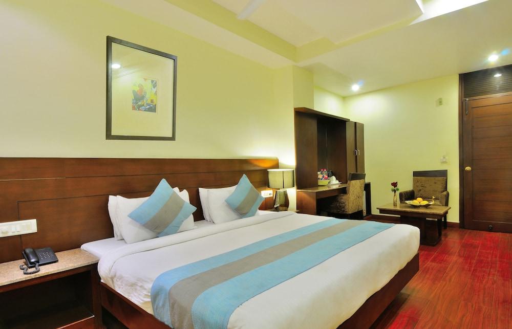 호텔 더 라즈, 뉴 델리(Hotel The Raj, New Delhi) Hotel Image 10 - Guestroom