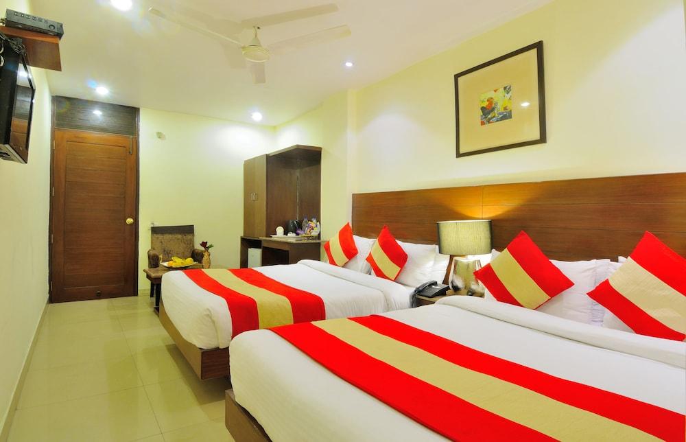 호텔 더 라즈, 뉴 델리(Hotel The Raj, New Delhi) Hotel Image 20 - Guestroom View
