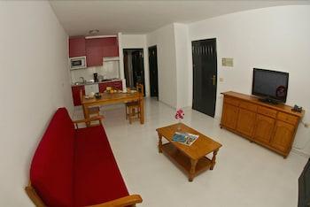 아파르타멘토스 솔(Apartamentos Sol) Hotel Image 8 - Living Area