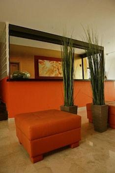 아파르타멘토스 솔(Apartamentos Sol) Hotel Image 2 - Reception
