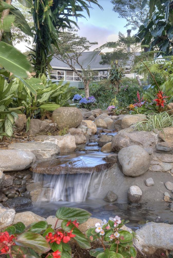 몬테베르데 로지 & 가든(Monteverde Lodge & Gardens) Hotel Image 27 - Outdoor Pool