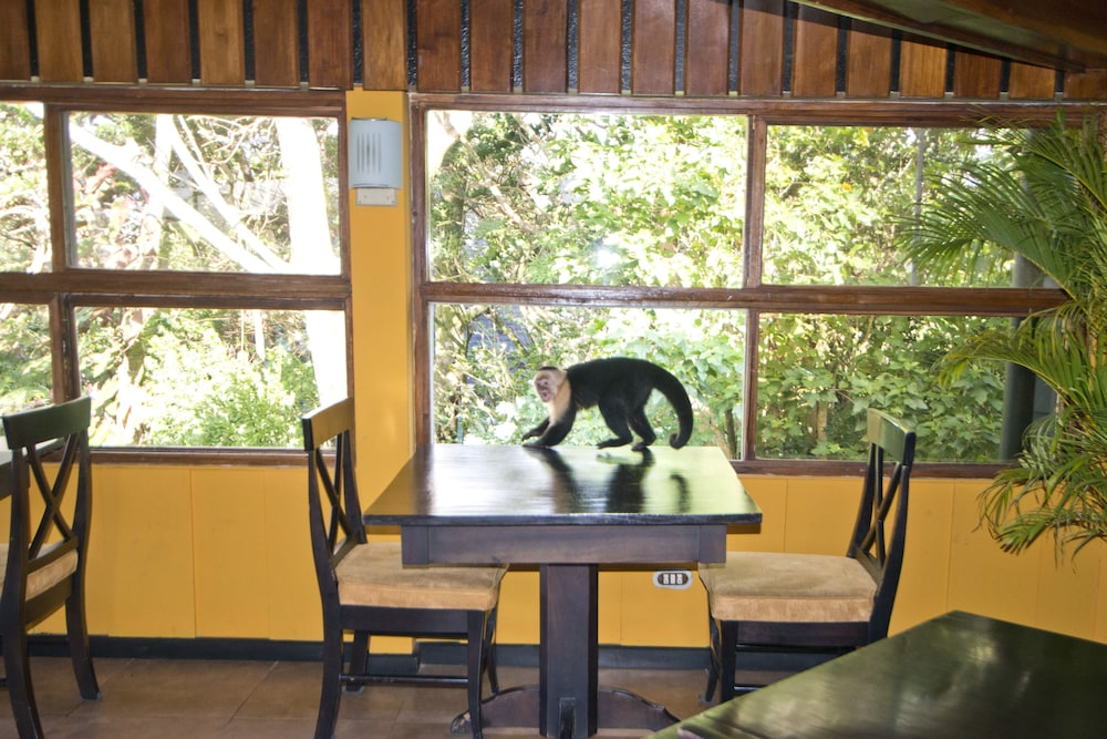 몬테베르데 로지 & 가든(Monteverde Lodge & Gardens) Hotel Image 42 - Restaurant