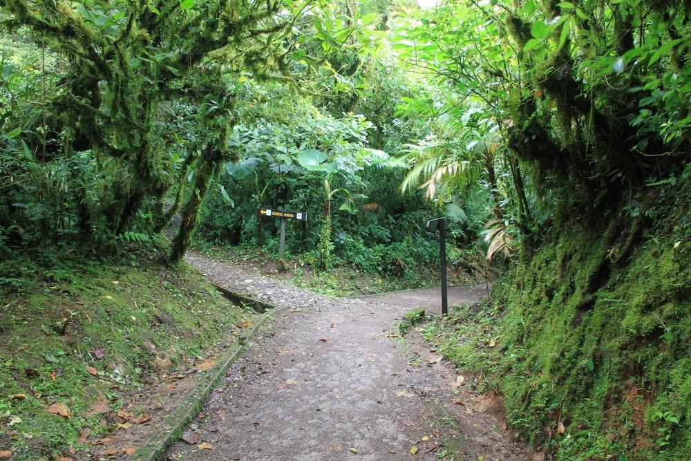 몬테베르데 로지 & 가든(Monteverde Lodge & Gardens) Hotel Image 33 - Hiking