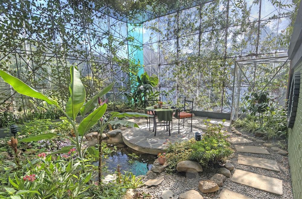 몬테베르데 로지 & 가든(Monteverde Lodge & Gardens) Hotel Image 57 - Garden