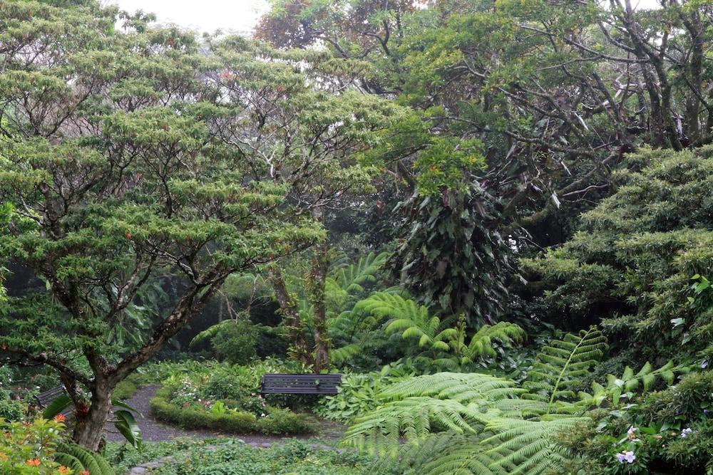 몬테베르데 로지 & 가든(Monteverde Lodge & Gardens) Hotel Image 1 - Aerial View