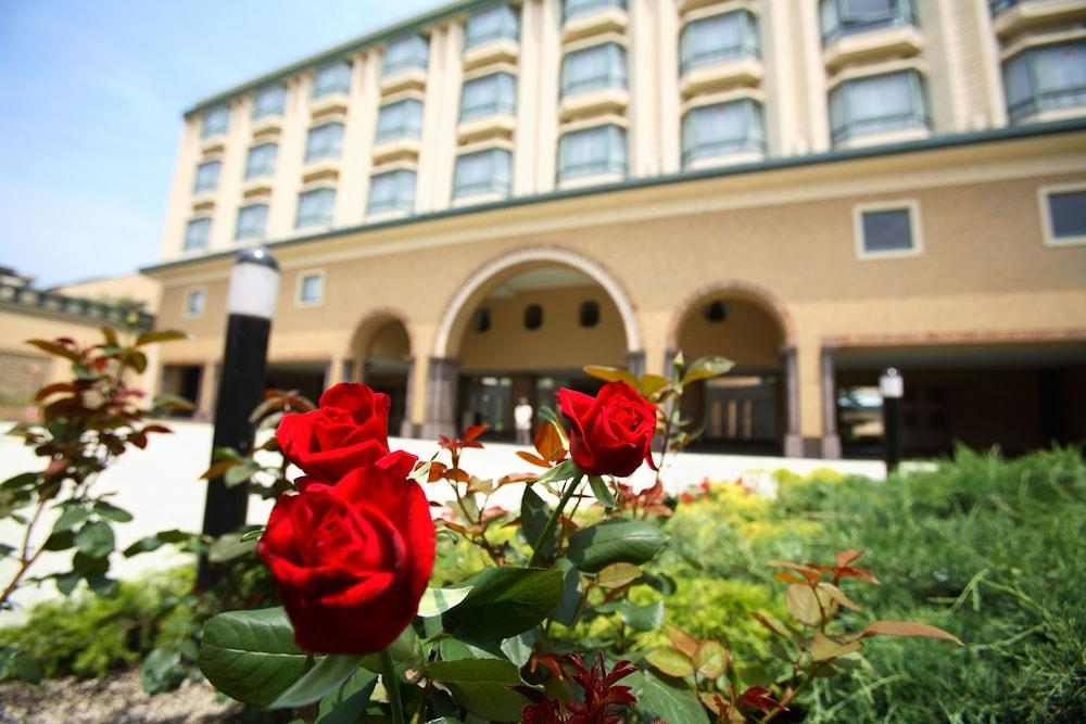 로얄 오크 호텔 스파 & 가든(Royal Oak Hotel Spa & Gardens) Hotel Image 47 - Courtyard