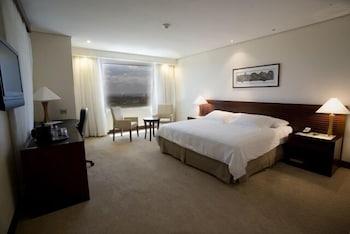 유로빌딩 호텔 플라자 과야나(Eurobuilding Hotel Plaza Guayana) Hotel Image 3 - Guestroom