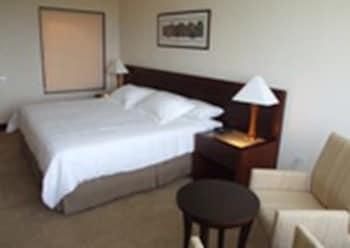 유로빌딩 호텔 플라자 과야나(Eurobuilding Hotel Plaza Guayana) Hotel Image 2 - Guestroom