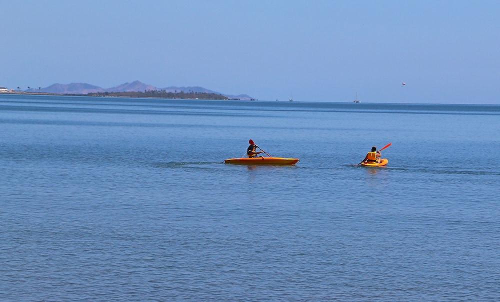 アクエリアス オン ザ ビーチ
