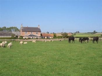 손턴 로지 팜(Thornton Lodge Farm) Hotel Image 14 - Property Grounds