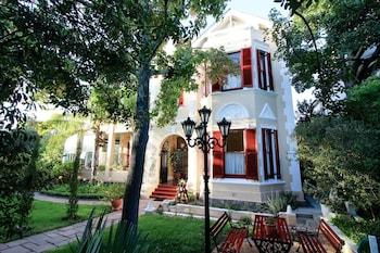 Hotel - Carmichael Guest House