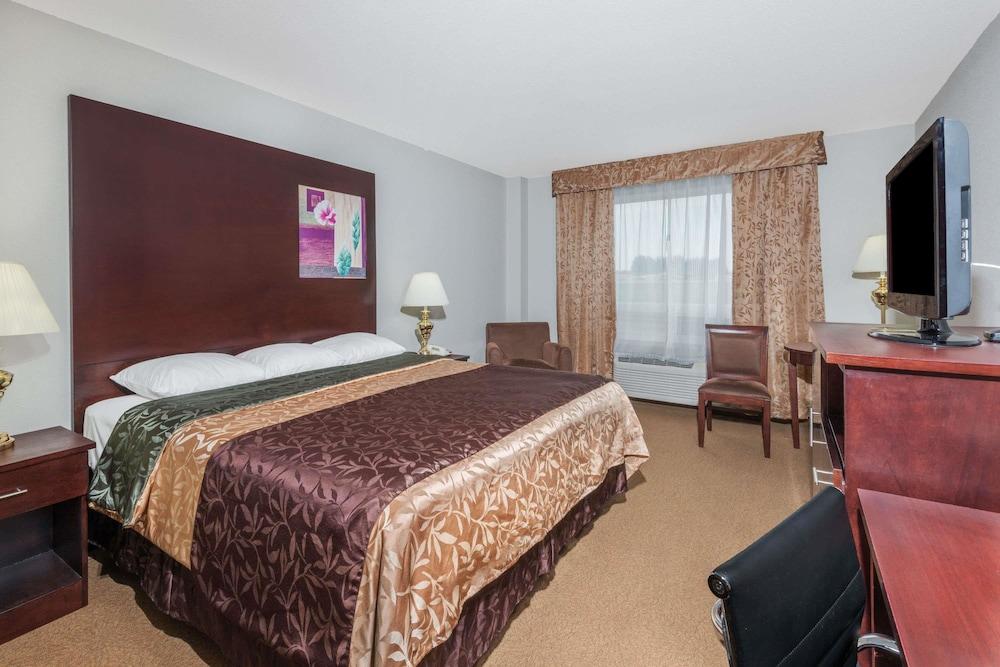 수퍼 8 바이 윈덤 이니스페일(Super 8 by Wyndham Innisfail) Hotel Image 5 - Guestroom