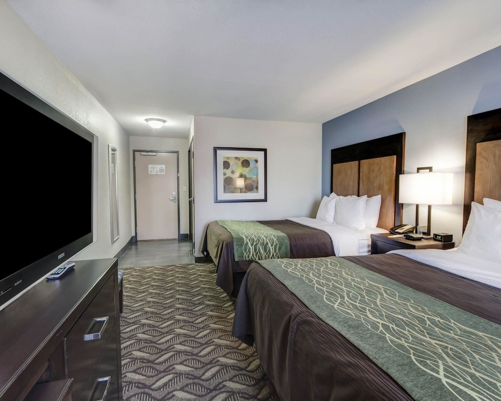 컴포트 인 & 스위트  I-10 에어포트(Comfort Inn & Suites I-10 Airport) Hotel Image 8 - Guestroom