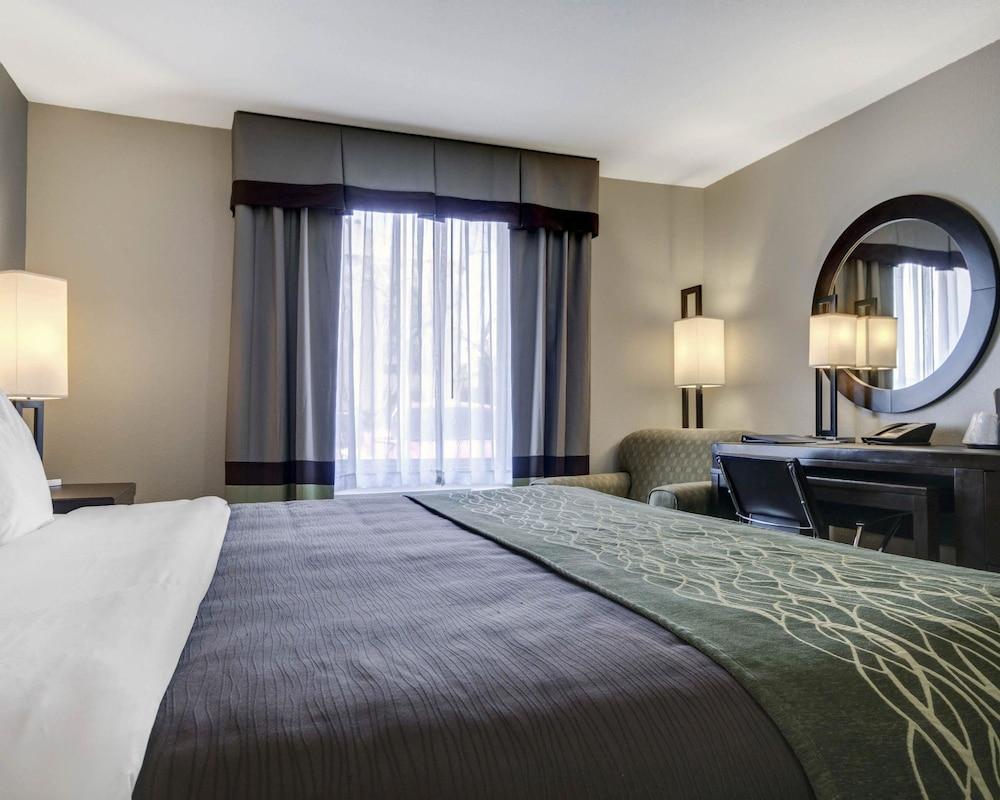 컴포트 인 & 스위트  I-10 에어포트(Comfort Inn & Suites I-10 Airport) Hotel Image 9 - Guestroom