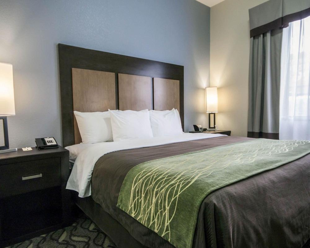 컴포트 인 & 스위트  I-10 에어포트(Comfort Inn & Suites I-10 Airport) Hotel Image 12 - Guestroom