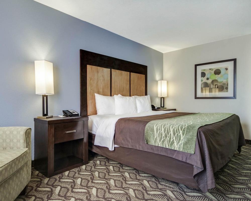 컴포트 인 & 스위트  I-10 에어포트(Comfort Inn & Suites I-10 Airport) Hotel Image 17 - Guestroom