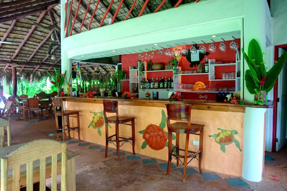 호텔 라 토르투가(Hotel La Tortuga) Hotel Image 21 - Hotel Bar