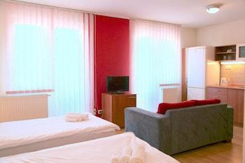 Comfort Tek Büyük Veya İki Ayrı Yataklı Oda, 1 Yatak Odası, Küçük Mutfak