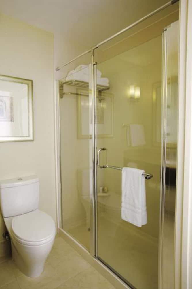 힐튼 가든 인 포트 워스 얼라이언스 에어포트(Hilton Garden Inn Fort Worth Alliance Airport) Hotel Image 16 - Bathroom