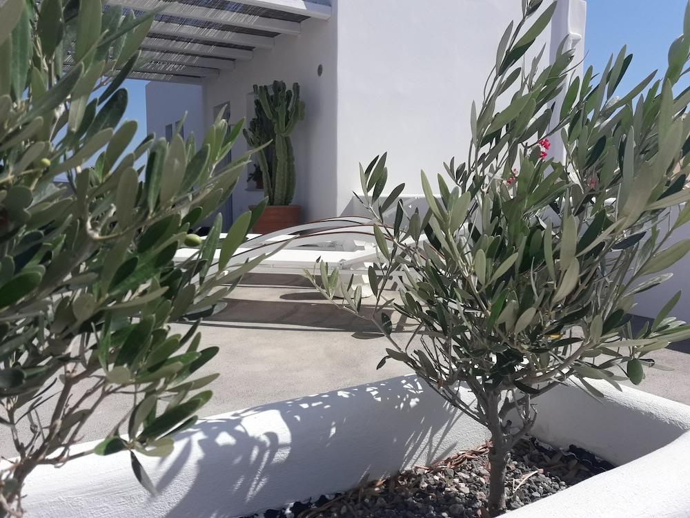 썬 아네모스 리조트(Sun Anemos Resort) Hotel Image 36 - Porch