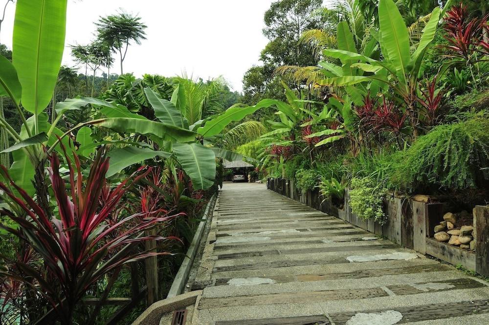 피그 트리 힐 리조트(Fig Tree Hill Resort) Hotel Image 63 - Garden