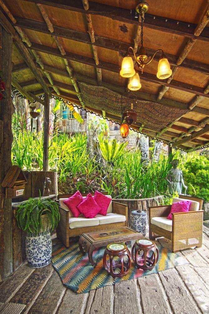 피그 트리 힐 리조트(Fig Tree Hill Resort) Hotel Image 9 - Guestroom