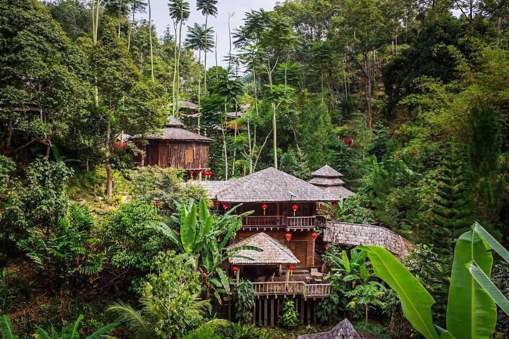 피그 트리 힐 리조트(Fig Tree Hill Resort) Hotel Image 0 - Featured Image