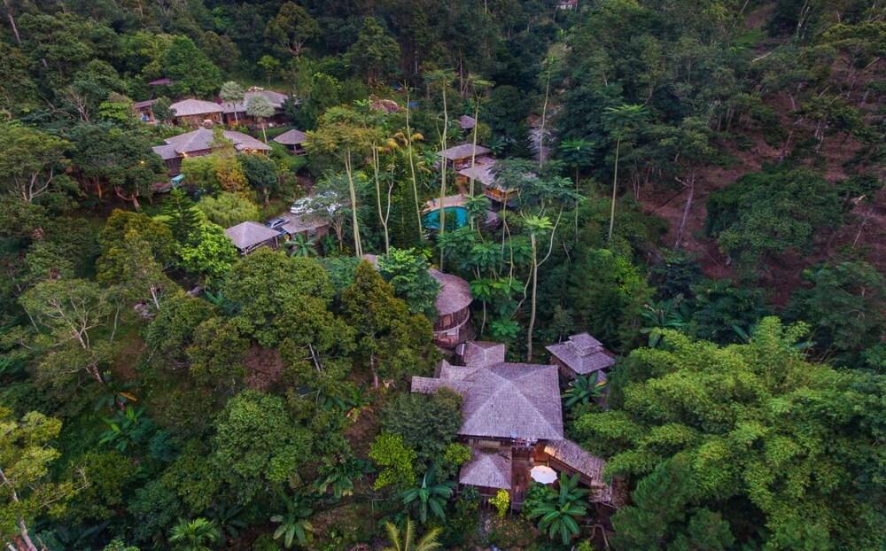 피그 트리 힐 리조트(Fig Tree Hill Resort) Hotel Image 51 - Aerial View