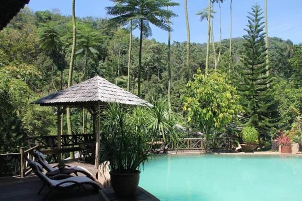 피그 트리 힐 리조트(Fig Tree Hill Resort) Hotel Image 2 - Pool