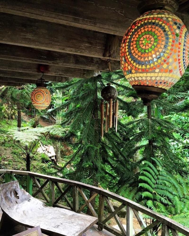 피그 트리 힐 리조트(Fig Tree Hill Resort) Hotel Image 41 - Balcony