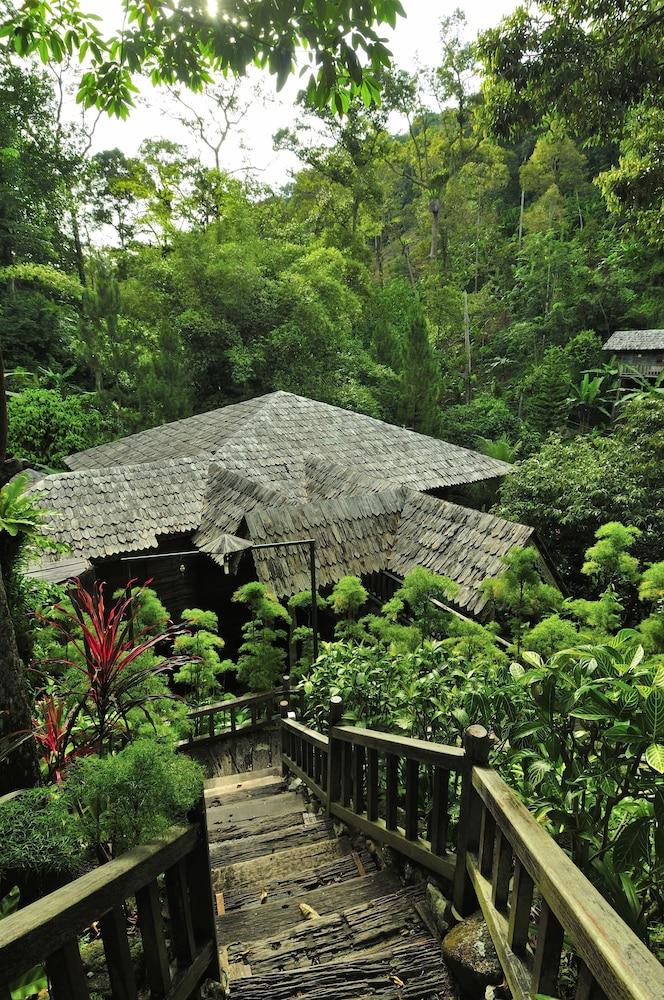 피그 트리 힐 리조트(Fig Tree Hill Resort) Hotel Image 58 - Property Grounds