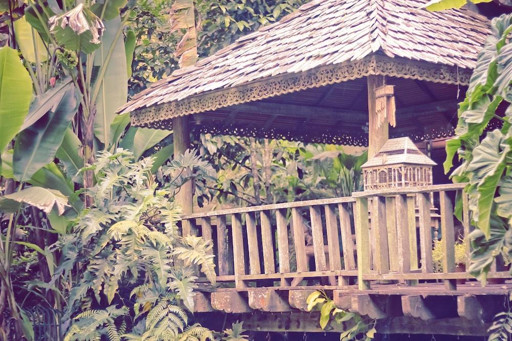 피그 트리 힐 리조트(Fig Tree Hill Resort) Hotel Image 65 - Gazebo