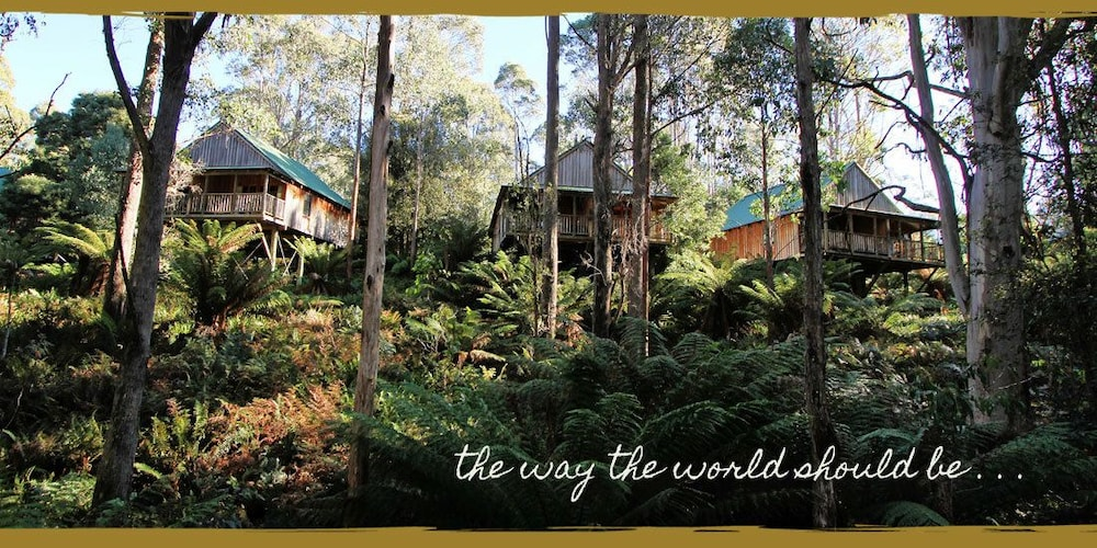 레몬 타임 와일더니스 리트리트(Lemonthyme Wilderness Retreat) Hotel Image 7 - Guestroom