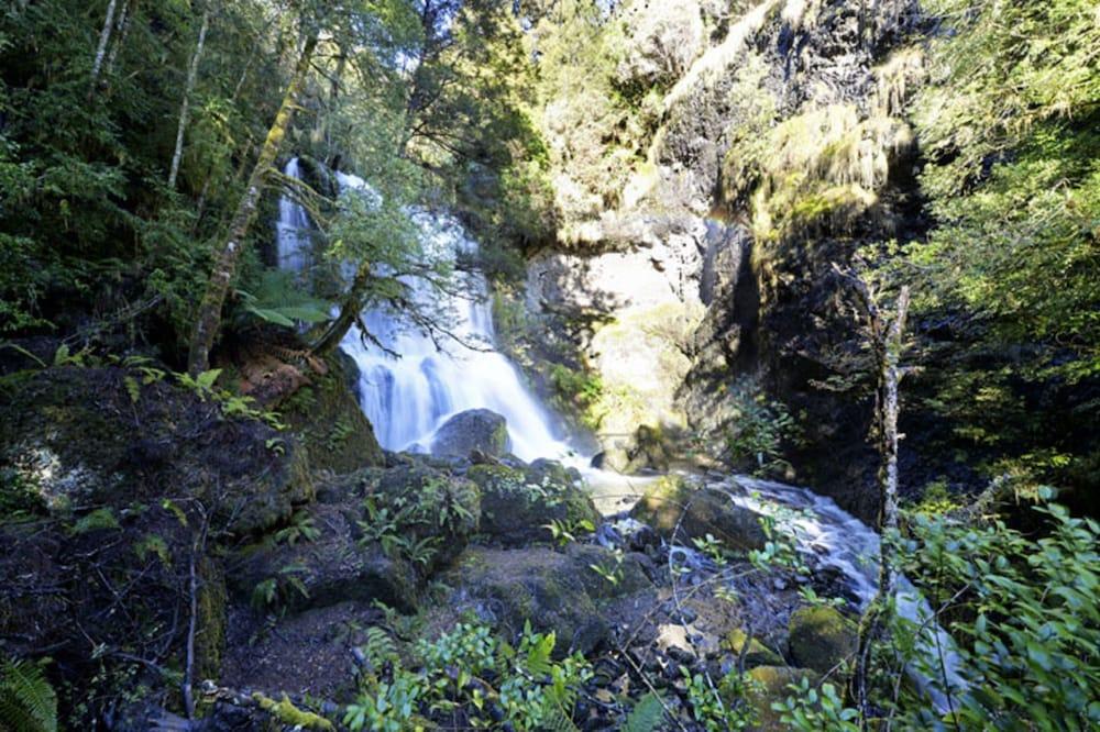 레몬 타임 와일더니스 리트리트(Lemonthyme Wilderness Retreat) Hotel Image 32 - Garden