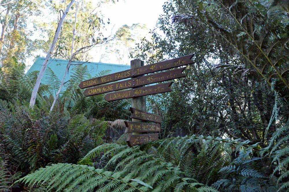 레몬 타임 와일더니스 리트리트(Lemonthyme Wilderness Retreat) Hotel Image 20 - Hiking