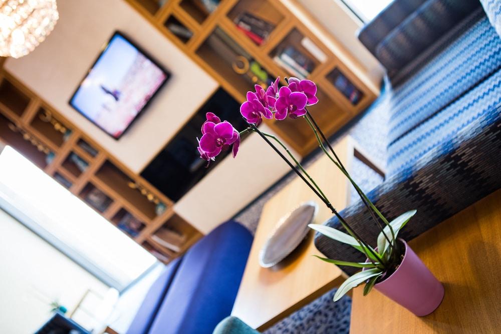 힐튼 가든 인 이스탄불 골든 혼(Hilton Garden Inn Istanbul Golden Horn) Hotel Image 13 - Guestroom