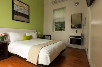 Basic Room (Cozy)
