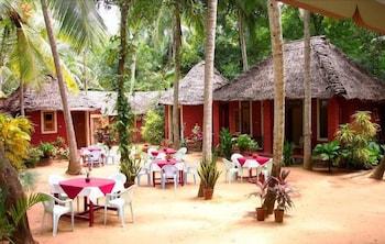 아이디얼 아유르베딕 리조트(Ideal Ayurvedic Resort) Hotel Image 12 - Garden
