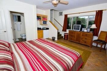 카이홀로 헤일(Kaiholo Hale) Hotel Image 13 - Guestroom